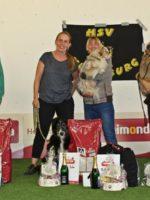 Dogdance Turnier 2018